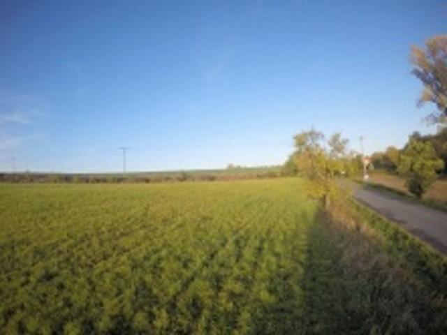 Prodej Pozemek Dobr�ice
