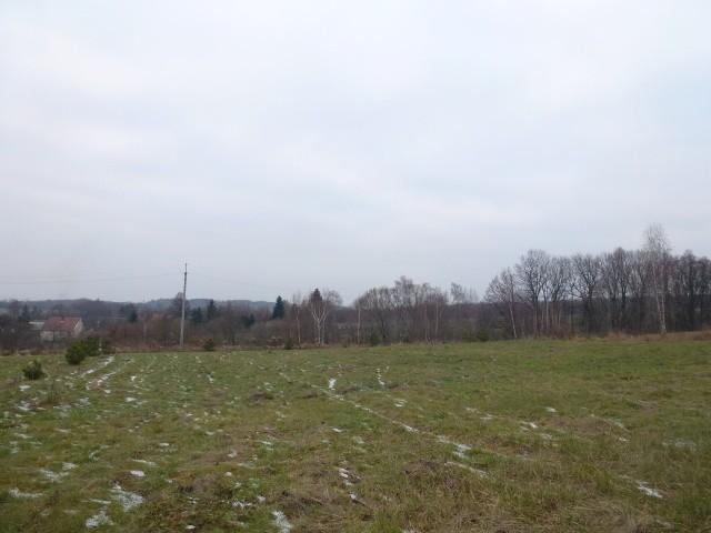 Prodej Pozemek Domašov u Šternberka
