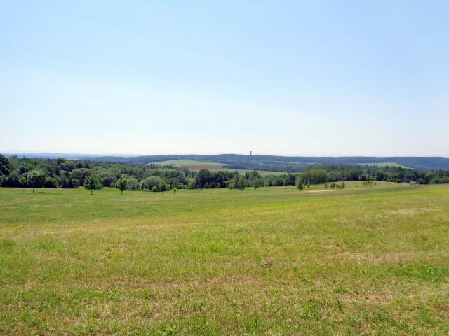 Prodej Pozemek Dolany